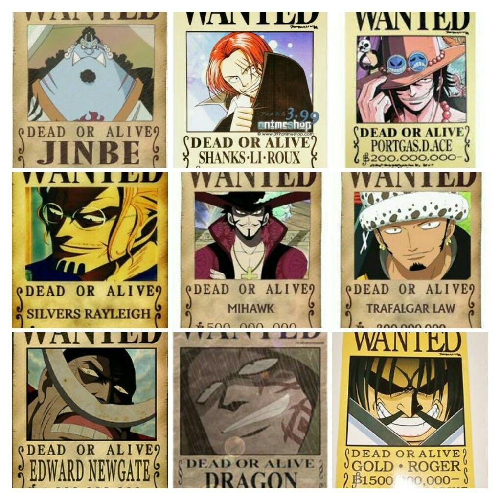 Great Allys Wanted Poster From One Piece Comic Books