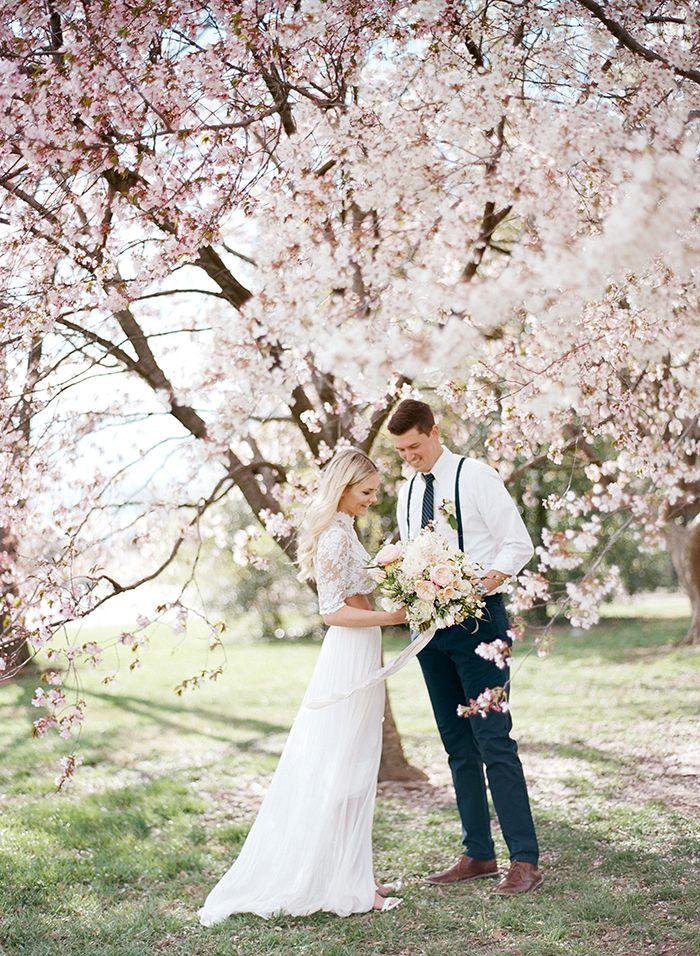 Dc Cherry Blossom Wedding Shoot On Film Spring Wedding Photography Wedding Shoot Blossom Tree Wedding
