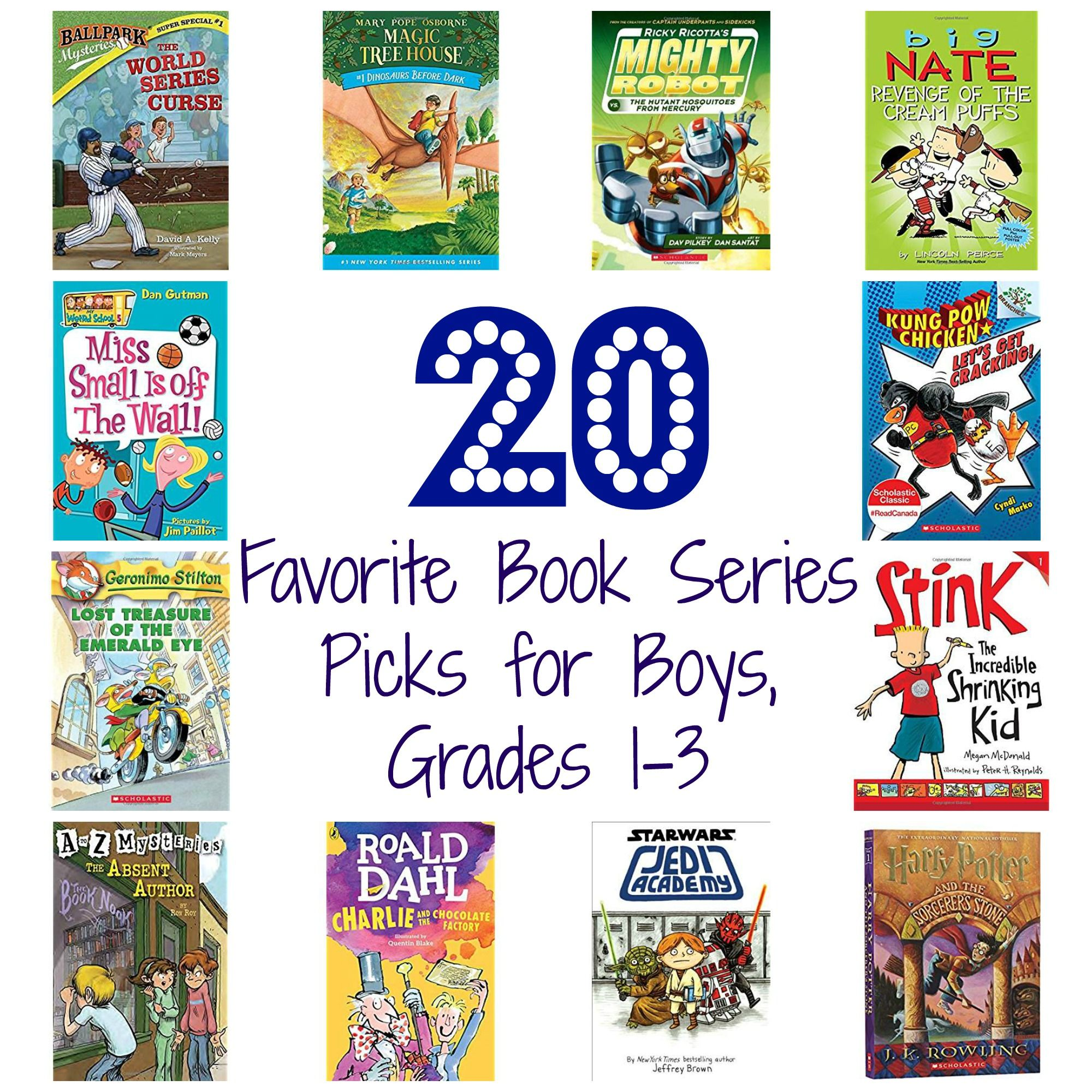 20 book series for boys grades 13 with