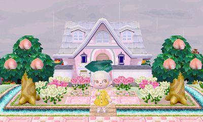 Pin By Kim Tedford On Dream Address Inspo Animal Crossing 3ds Animal Crossing Animal Crossing Qr
