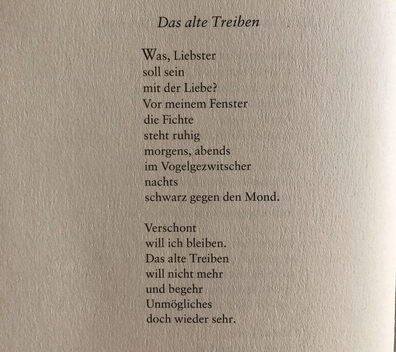 Pin von Gold Panda auf Deutsch - -Zitaten - - usw | Zitate
