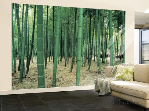 Bamboo Forest Huge Wall Mural Poster Print Wall mural posters