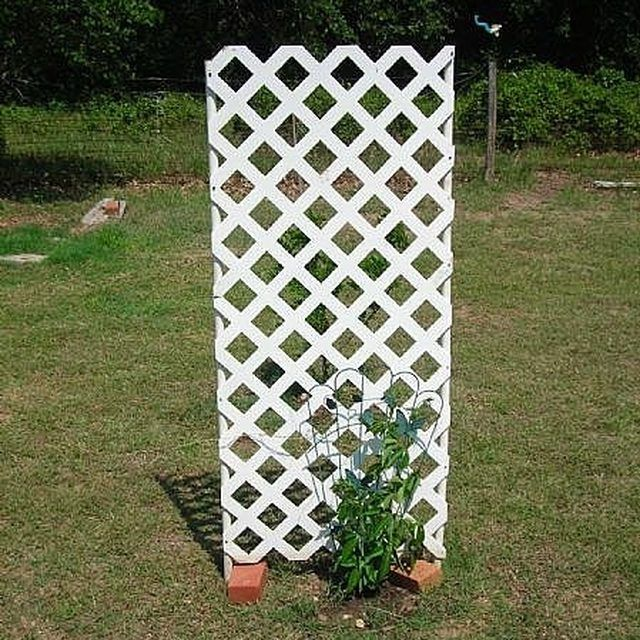 Diy Pvc Gardening Ideas And Projects: Garden Trellis, Trellis, Diy Trellis