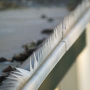 Cleaning Solution for Stains on Outdoor Gutters | eHow