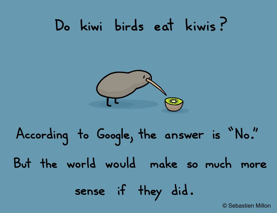 Pin By George Barron On Illustration Funny Cartoons Kiwi Bird Funny Pictures