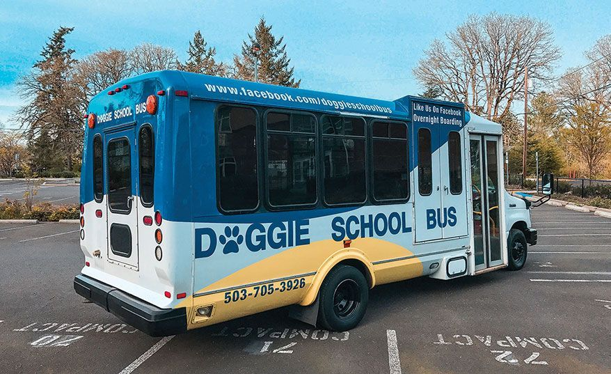 Must read this doggie school bus driver created his dream