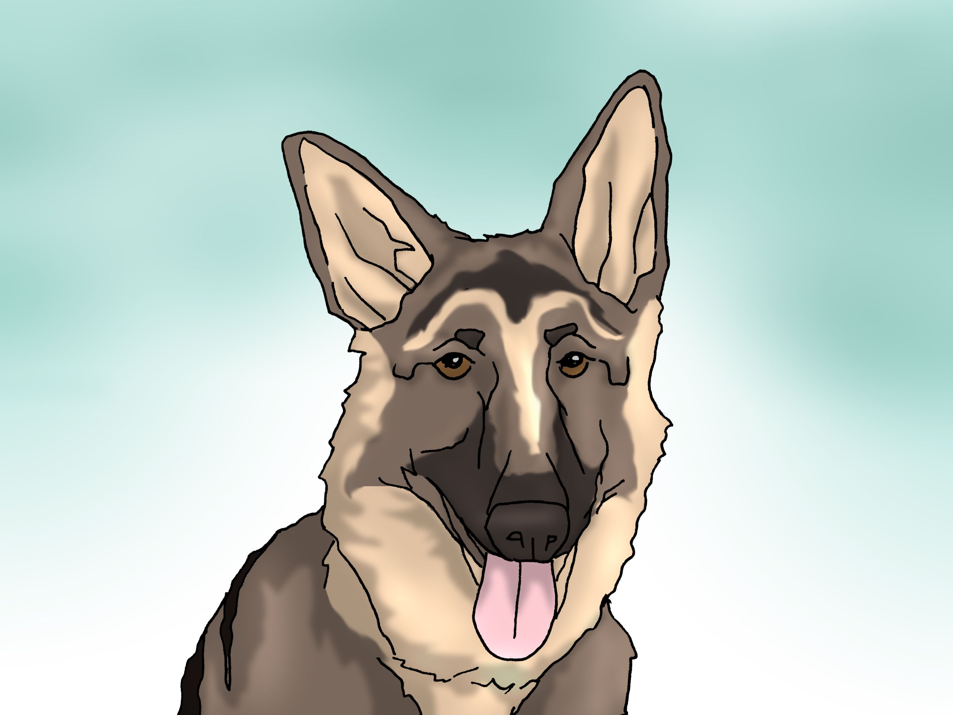 Tape Up Stubborn German Shepherd Puppy Ears German Shepherd Ears