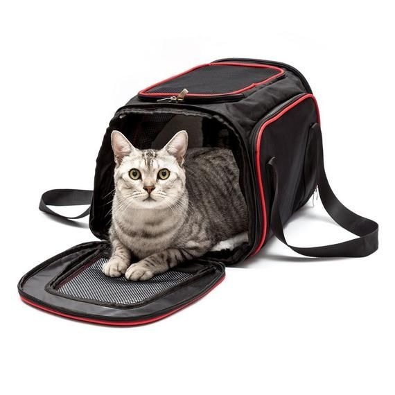 FREE Shipping, A 69.99 - Small Animal Expandable Shoulder Carrier Bag. Use  CODE
