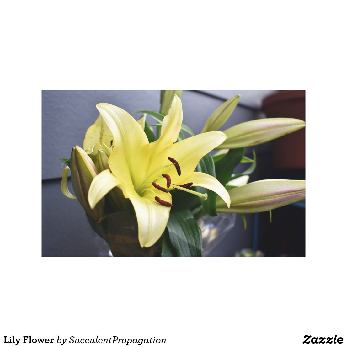 Lily Flower Canvas Print | Flower canvas and Canvases