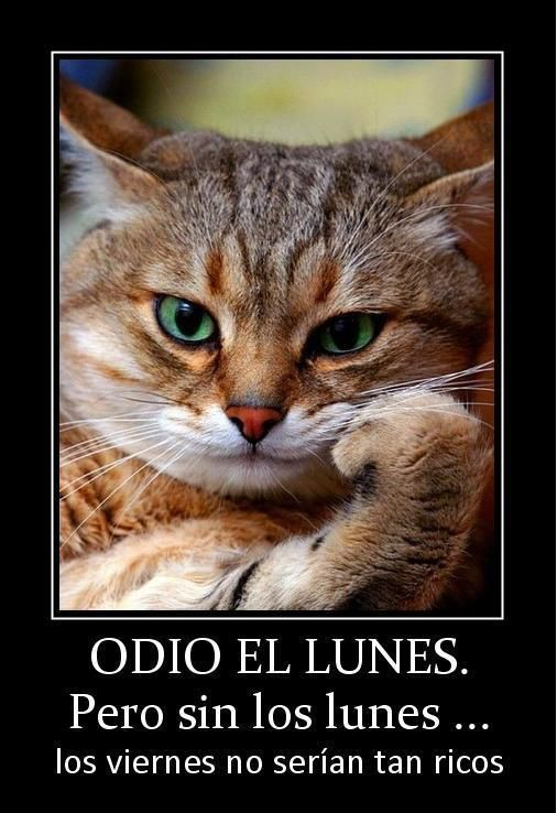 Odio el lunes. Pero sin los lunes...los viernes no serían tan ricos.