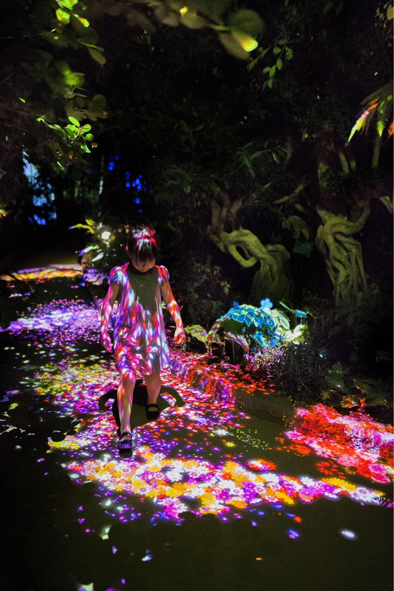 Living Things Of Flowers Symbiotic Lives In The Botanical Garden Teamlab チームラボ Motion Graphics Inspiration Avatar Theme Botanical Gardens