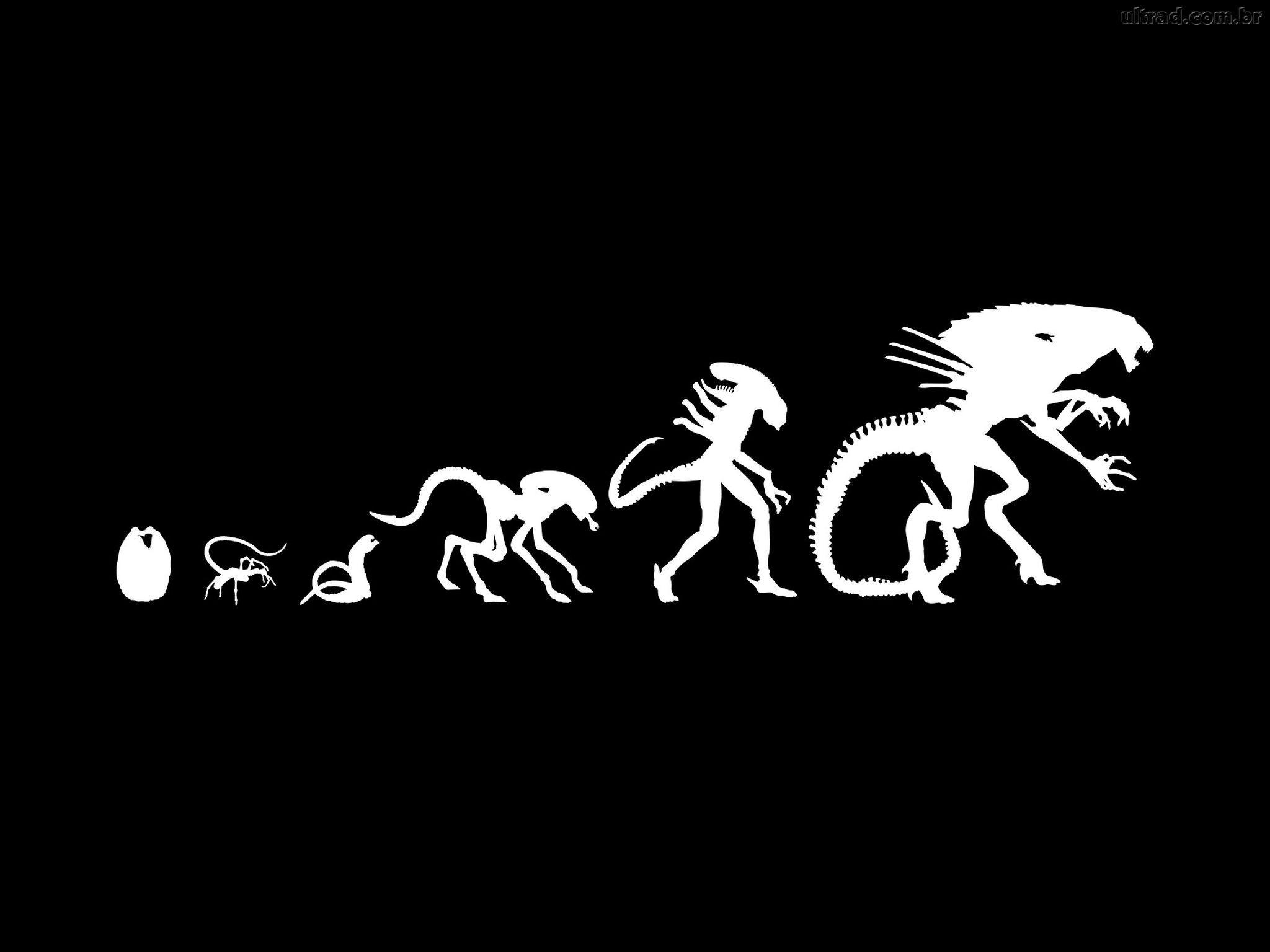 Alien xenomorph evolution  | Cinema | Alien concept art
