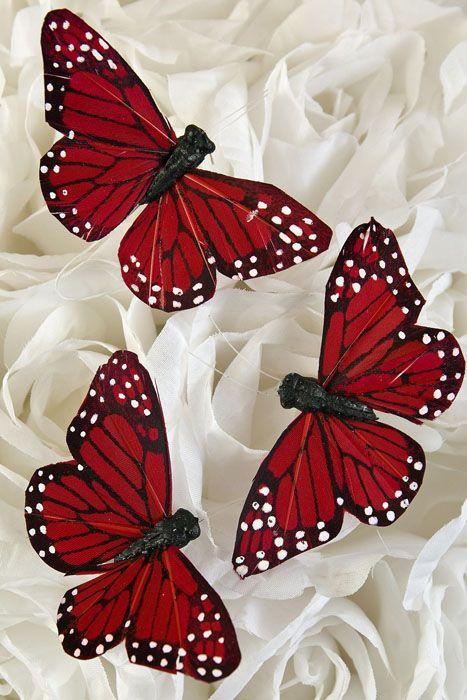 3 39 39 Butterfly Red Pkg X2f 12 Butterfly Painting Butterfly Wallpaper Backgrounds Butterfly Art