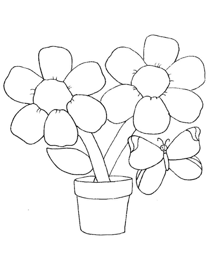 Coloring pages of spring things - Spring Flowers Colouring Sheets