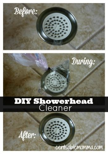 Diy Showerhead Cleaner Cleaning Products Shower Heads