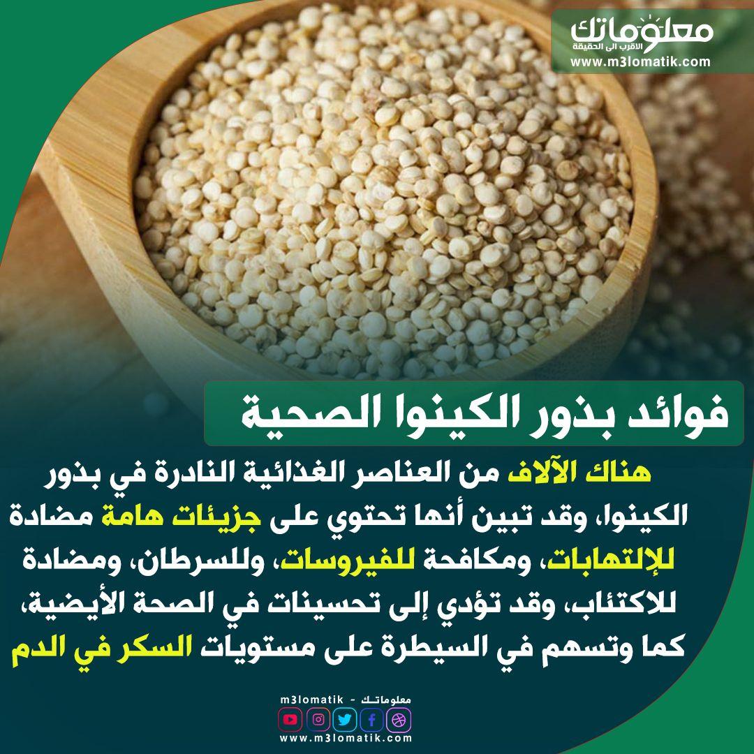 فوائد بذور الكينوا الصحية Food Vegetables Condiments