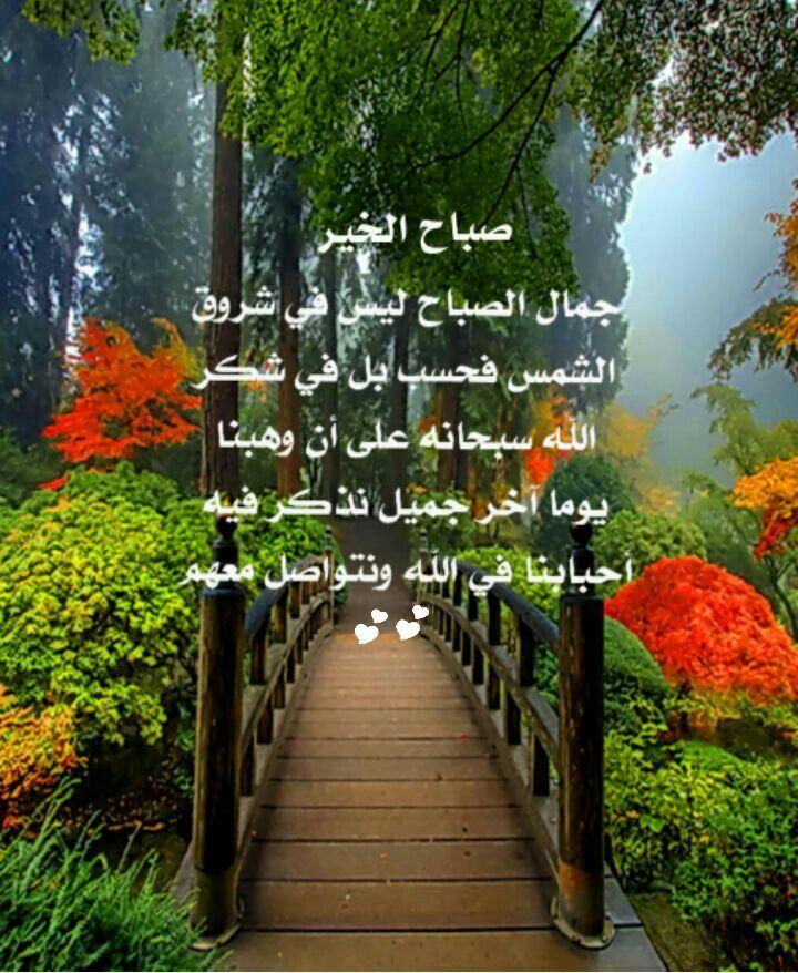 Pin By Eman Duniya On صباح الخير Good Morning Flowers Morning Images Backyard Patio Designs