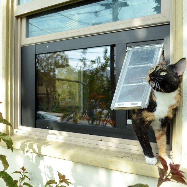 Endura Flap By Patio Pacific Thermo Sash 3e Sash Window Cat Dog Door Cat Door Pet Door Pet Doors