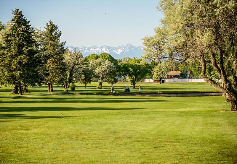 Black Canyon Golf Course Montrose Co Official Website Golf Courses Montrose Colorado Colorado Native