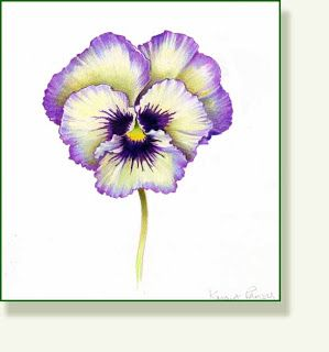 Pencil And Leaf Leaf Of The Day Kmart Pansy Pansies Flowers Flower Painting Pansies
