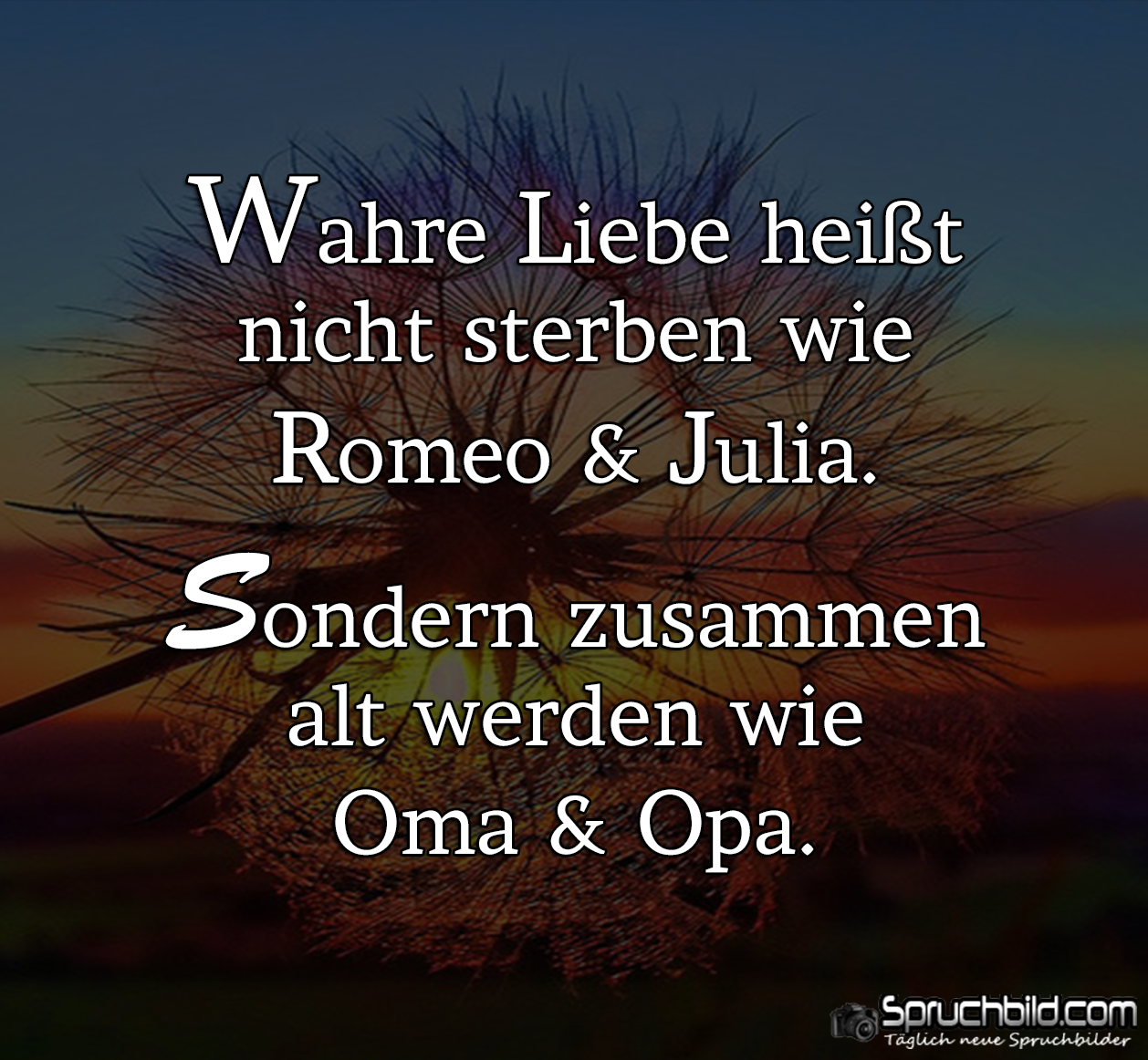 Wahre Liebe heißt... | { thoughts } | Love Quotes ...