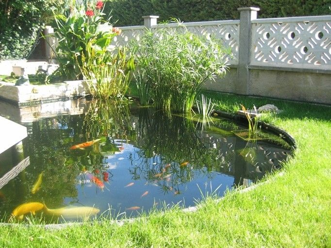 bassin de jardin | Chauffer son bassin de jardin grâce au soleil ...