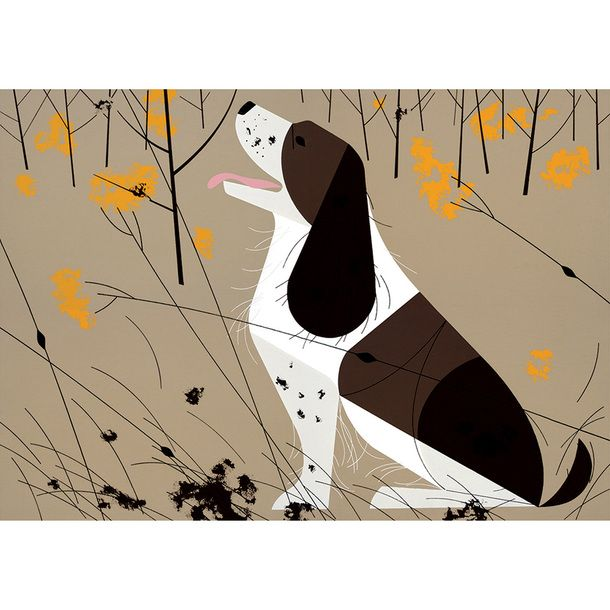 Charley Harper: Illustrated Life by AMMO Books   Fab.com   lovely ...