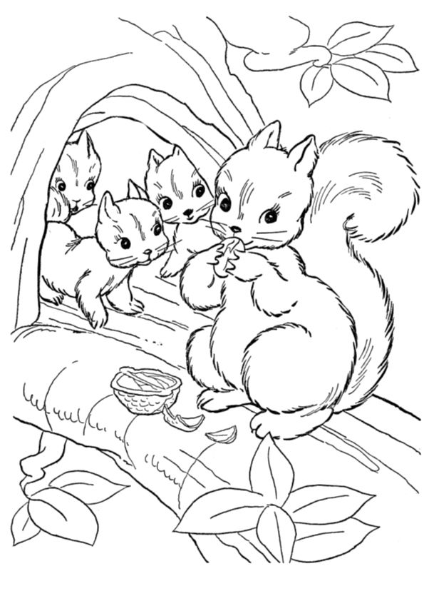 10 Cute Chipmunk Coloring Pages Your Toddler Will Love To Color Squirrel Coloring Page Animal Coloring Pages Family Coloring Pages