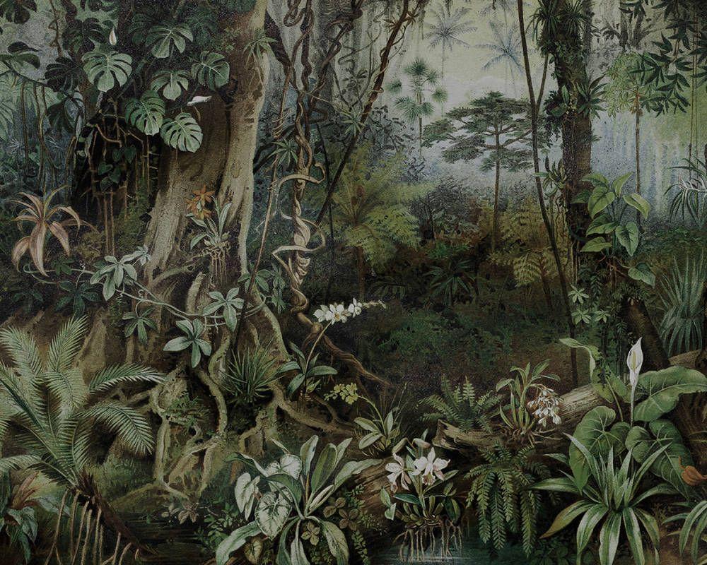 Dschungel badezimmer dekor kathrin und mark patel fototapete jungle  dd  neue crib