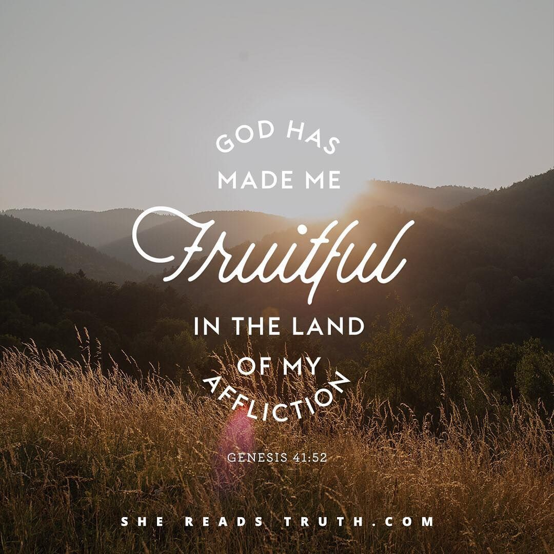 god has made me fruitful in the land of my affliction genesis 41