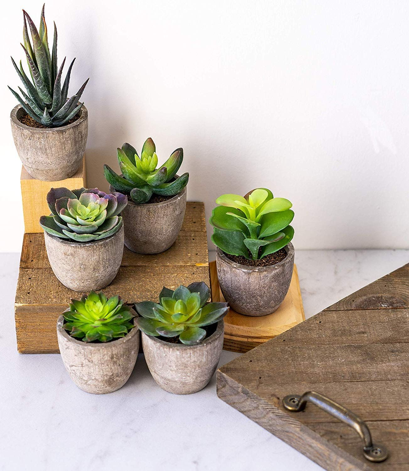 Variety Set Of Fake Succulent Plants Faux Succulents In Pot Etsy In 2020 Succulents Decor Artificial Succulent Plants Small Artificial Succulents