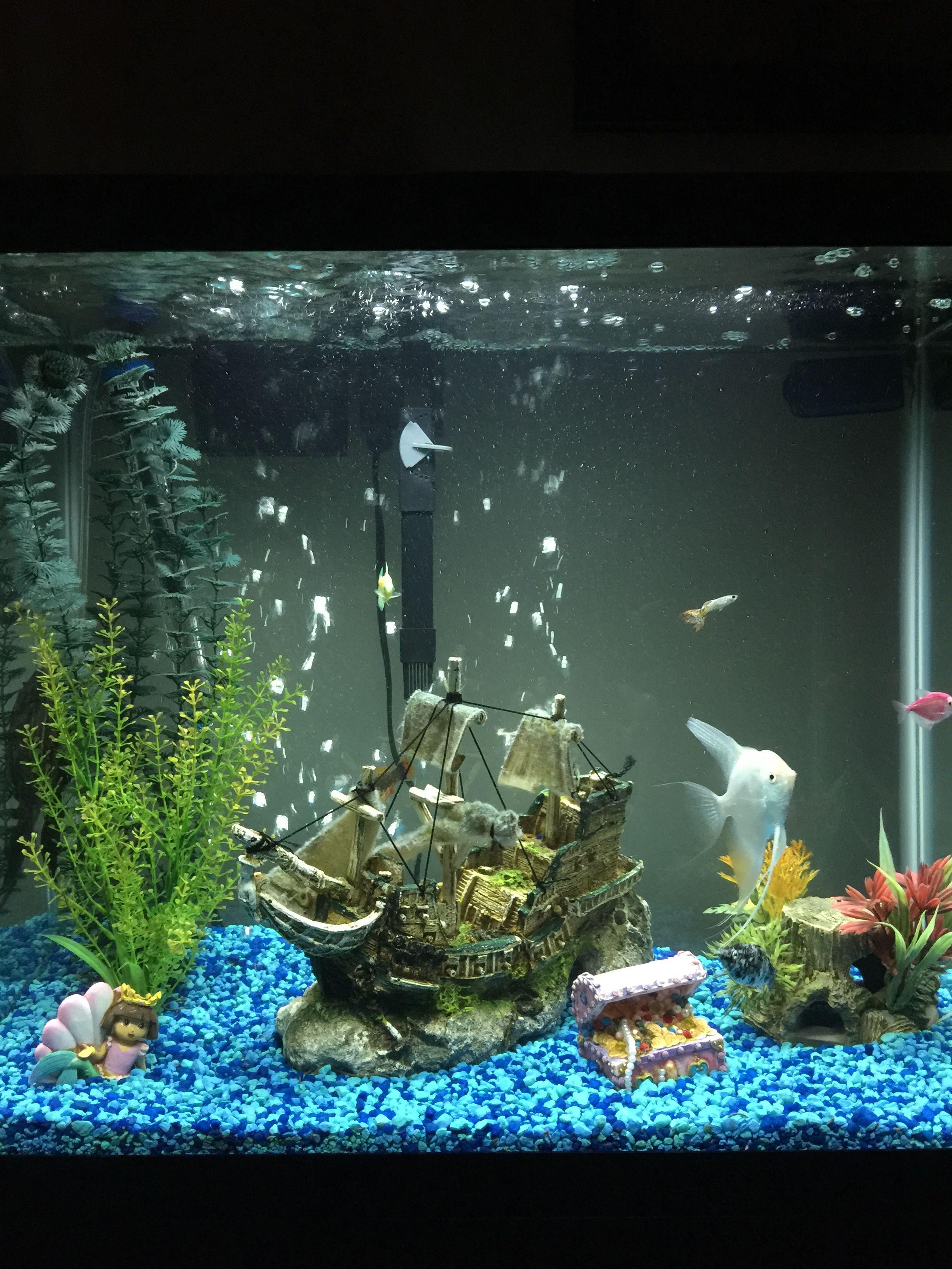 Peceras Tropical Fish Aquarium Fish Tank Planted Aquarium