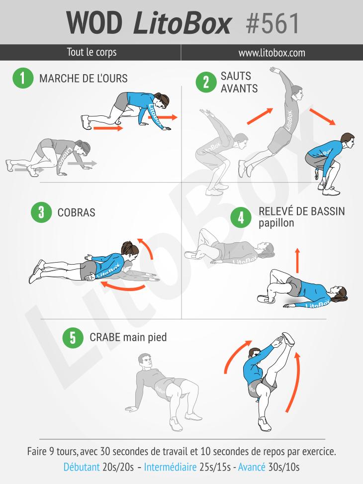 Circuit HIIT | Hiit, Hiit perte de poids, Exercice hiit