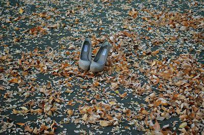 steve madden shoes autumn