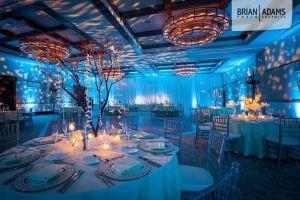 wedding, uplighting, uplights, blue uplighting, blue, under the sea ...
