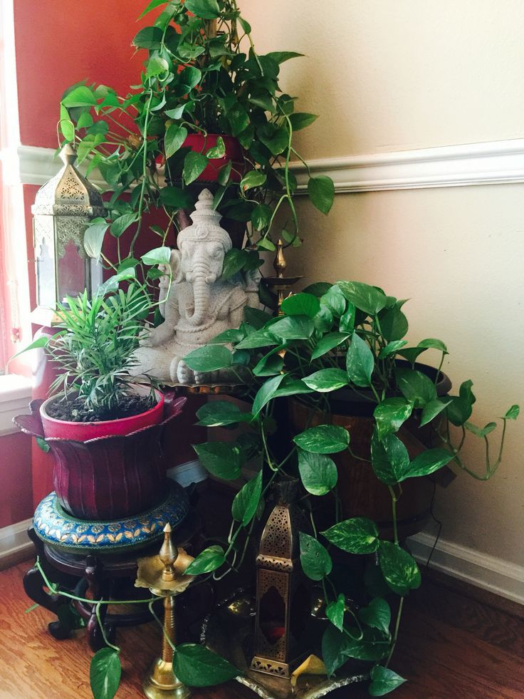 Ganesha Apartment Balcony Garden Plant Decor Asian Home Decor