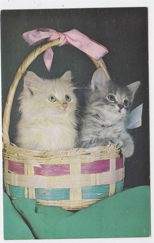 KITTENS IN EASTER BASKET VNTAGE ALFRED MAINZER POSTCARD