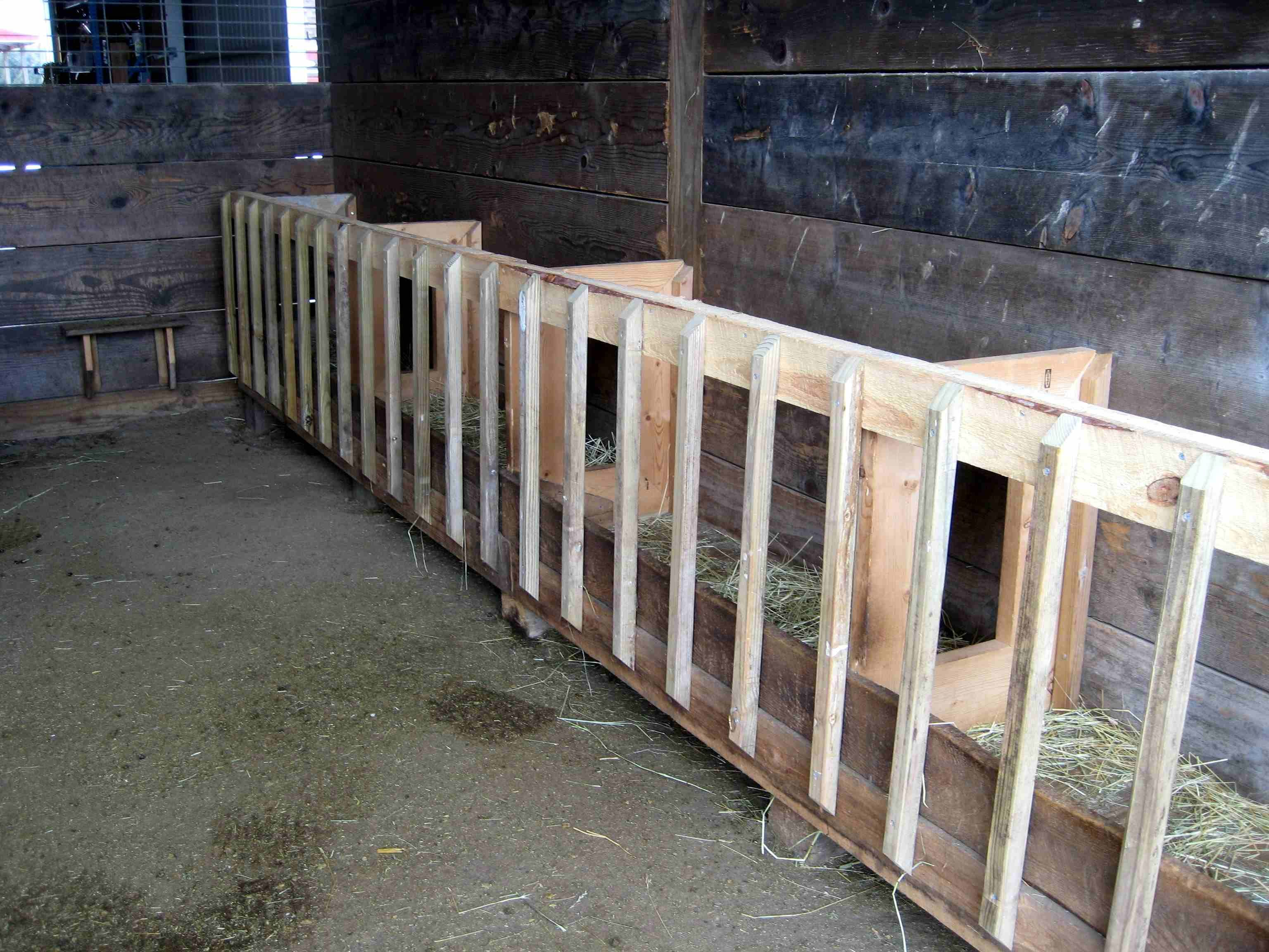 same best round eat feeders goats trough recycled of for our hay amp horses all inspirational bale feeder the rack llamas and sheep homemade repurposed thing