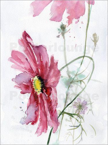 Verbrugge Watercolor Kosmea Aquarell In 2020 Watercolor