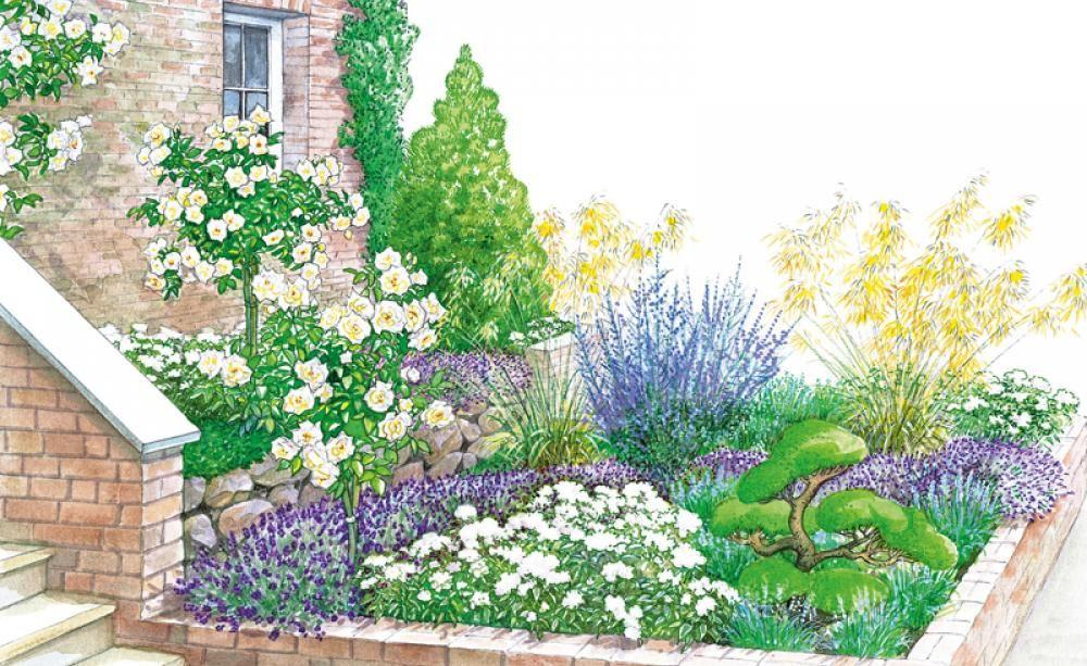 Vorgartengestaltung 40 Ideen zum Nachmachen Vorgärten, Lavendel