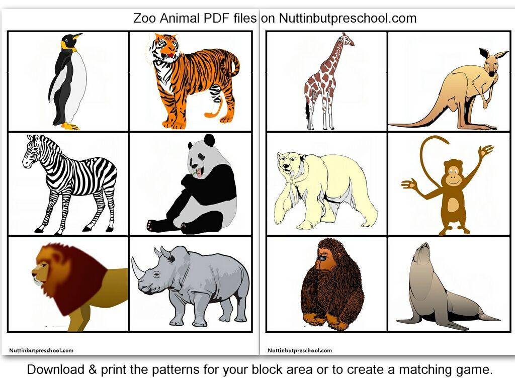 Zoo Animal Printables For Block Corner Or Matching Game Zoo Animals Animal Pictures For Kids Animal Printables [ 768 x 1024 Pixel ]