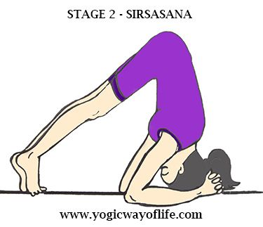 related image  headstand yoga head stand yoga poses