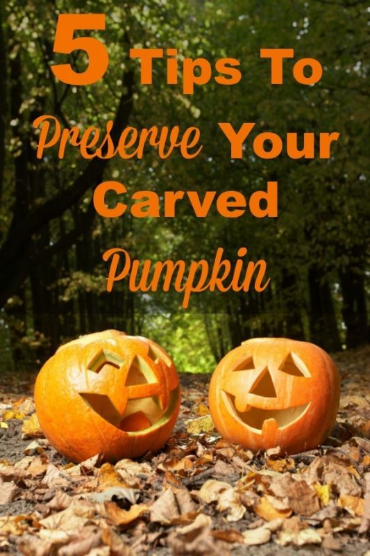 If you're tired of your Jack-O-Lantern getting moldy and dried out too quickly, here are 5 tips to preserve your carved pumpkin to make your family's work last a bit longer #ad