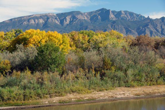 Rio Grande River And Sandia Mountains Albuquerque Nm New Mexico