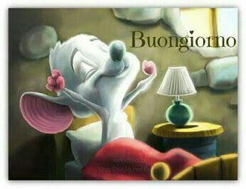 Boa noite !!!!!