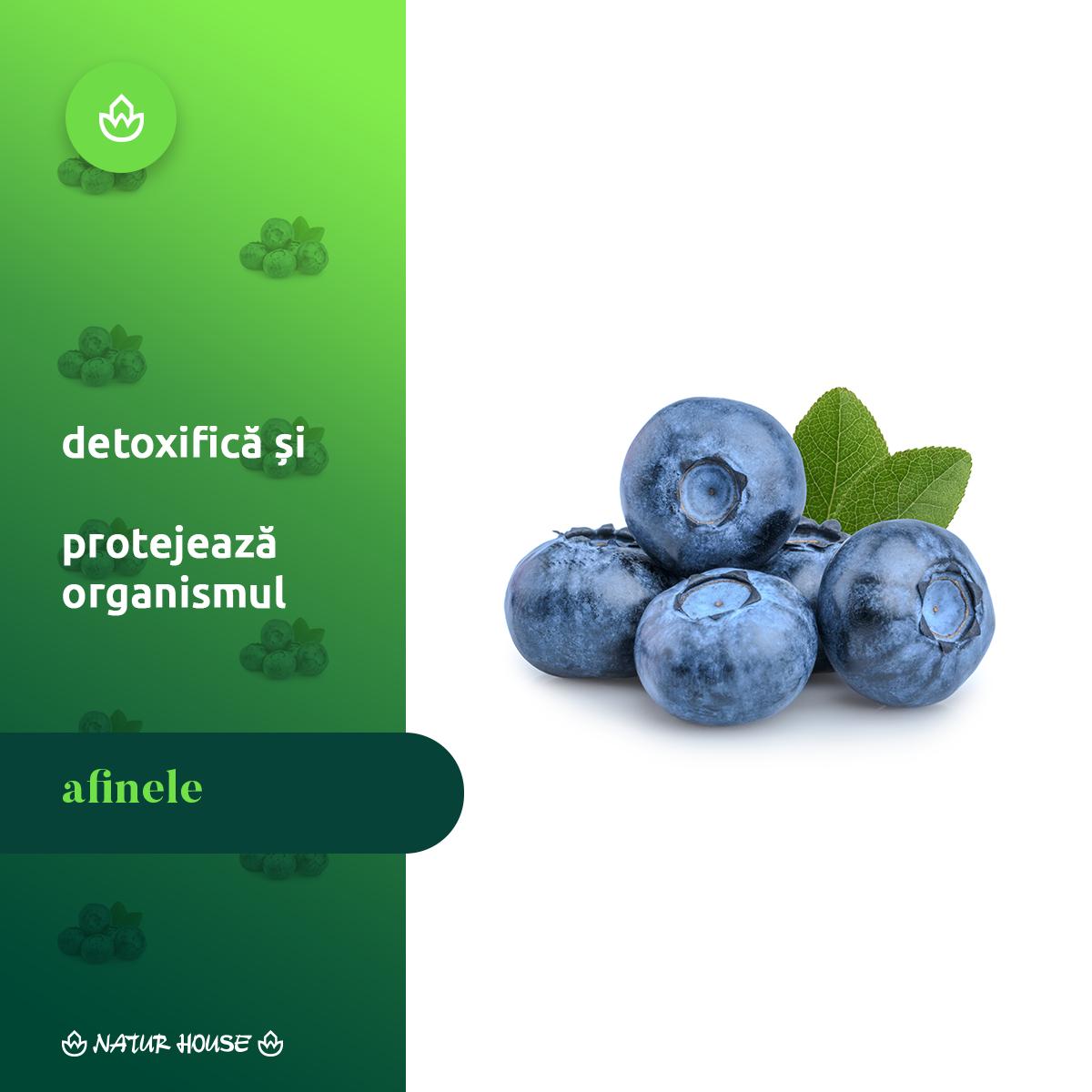 varicoză și afine)