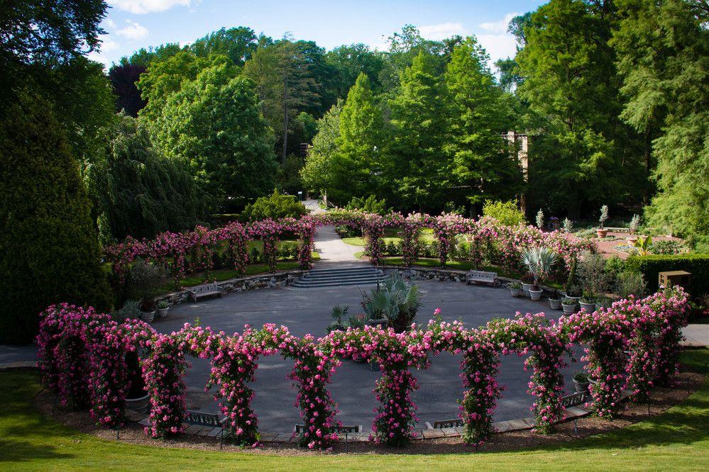 badba40ec9eb6859afaa81f6e962845b - What To Do Around Longwood Gardens