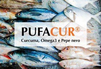 Pufacur: il ruolo degli Omega 3 nel trattamento della infiammazione cronica sistemica  Pufacur:  Omega3 (#EPA e #DHA), #Curcuma, Pepe nero, Vitamine A, C, D3, E, Zinco e Selenio