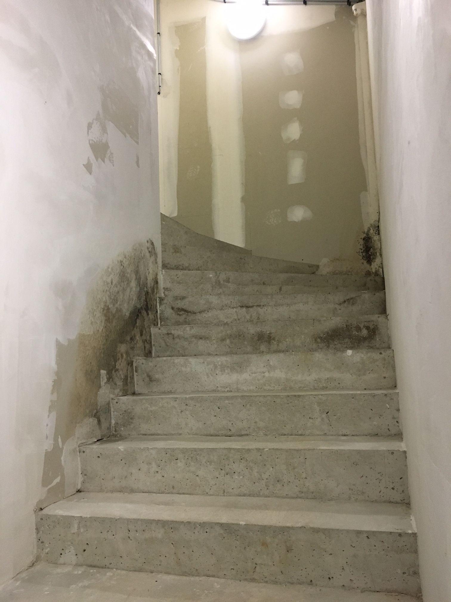 Devis Traitement Humidité  Montigny-le-Bretonneux ▷ Tarif : Entreprise, diagnostic remontées capillaires murs