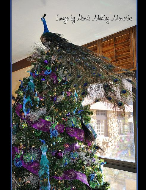 Peacock Christmas Tree Grove Park Inn Entertaining Parties